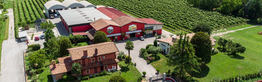 Cantine Borgo Veritas Vini e Spumanti